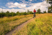 Mountain biker cycling riding in mountains and woods