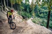 """Постер, картина, фотообои """"Горный байкер, езда на велосипеде в осеннем лесу"""""""
