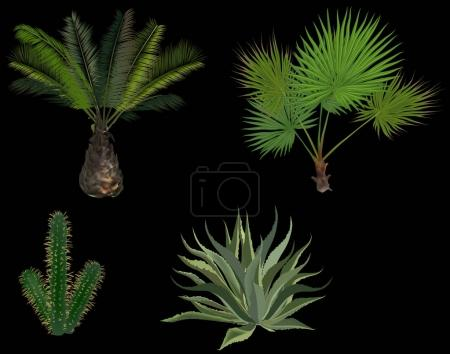 green palm trees and cactus isolated on black