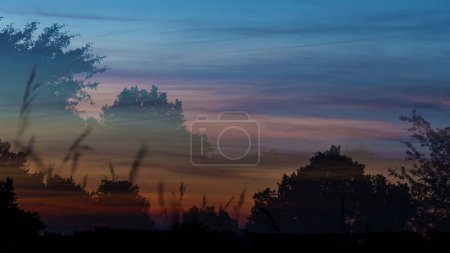 Photo for Meadow in sunset time (Multiple exposure). - Royalty Free Image