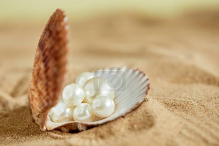 pearls in open shell on beach