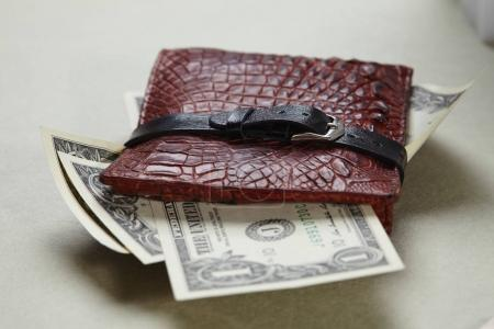 leather wallet with dollar banknotes on light background