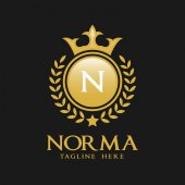 Letter N Logo - Classic Luxurious Style Logo Template