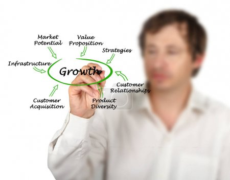Important contributors to Growth