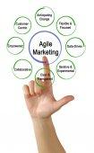 Woman presenting Agile Marketing Properties