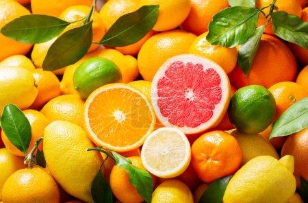 Foto de Mezcla de frutas frescas con hojas como fondo, vista superior - Imagen libre de derechos