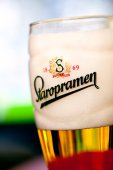 SOFIA, BULGARIA - MAY 08, 2017: Glass of Staropramen premium beer on tv background with reflection. Staropramen brewery was founded in Praque in 1869.