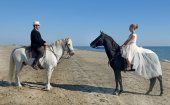 Marrieds and horses