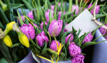 Photo for Beautiful purple tulips in flower shop - Royalty Free Image