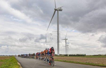 The Peloton - Paris-Tours 2017
