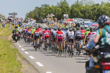The Peloton - Tour de France 2017