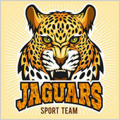 Jaguars - Sport Team Design