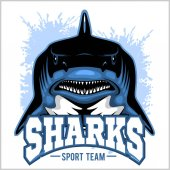 Strong shark sports mascot Vector illustration