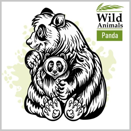 Illustration for Panda bear with a baby in monochrome style on white backgroung - Royalty Free Image