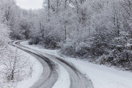 Photo pour Route hivernale à travers une forêt glacée couverte de neige après une tempête de verglas et des chutes de neige - image libre de droit