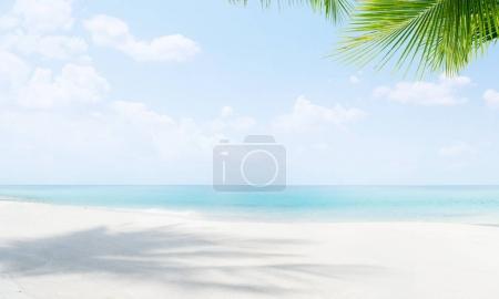 Photo pour Vue sur la belle plage tropicale avec des palmiers - image libre de droit