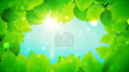 Summer background, natural frame of beautiful green leaves