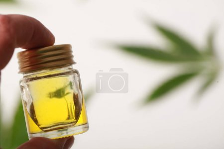 Photo for Cannabis leaves CBD oil hemp products - Royalty Free Image