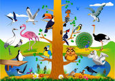 Collection of birds in the forest near the green field vector