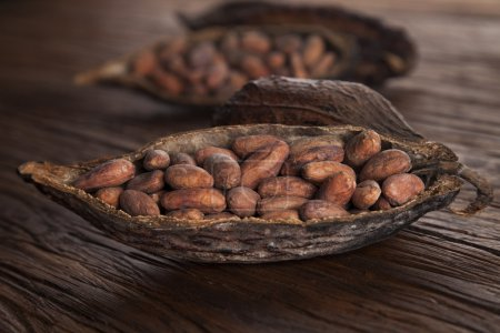 Cocoa pod on wooden background...