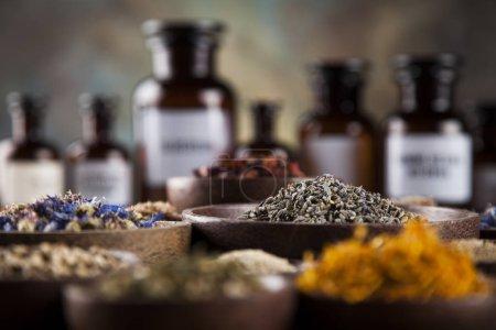 Photo pour Médecine à base de plantes sur bureau en bois, herbes médicinales fraîches et cicatrisantes - image libre de droit