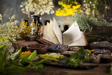 Photo for Healing herbs, Natural medicine on wooden table background - Royalty Free Image