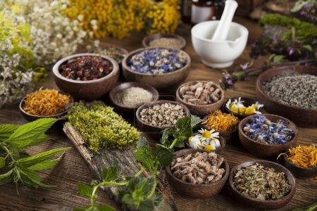 Foto de Medicina alternativa, hierbas secas en mesa de madera - Imagen libre de derechos