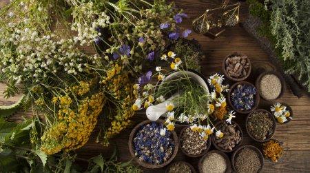 Photo pour Plantes curatives sur table en bois, mortier et herbes médicinales - image libre de droit