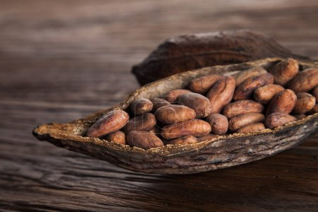 Cocoa pod on wooden background close up...