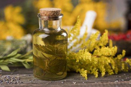 Photo pour Fresh herbs and oils, wooden table background - image libre de droit