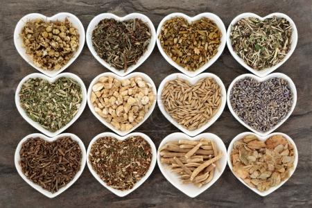 Alternative Medicine for Anxiety Disorders