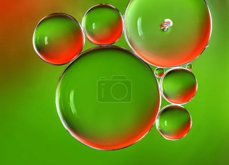 Photo for Water bubbles abstract background, water drops macro. - Royalty Free Image