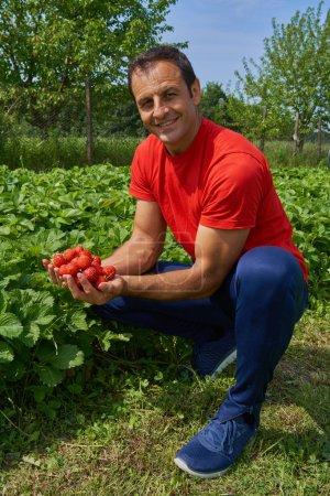 Farmer presenting strawberries
