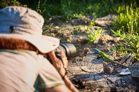 Photo pour Photographe de nature professionnel prenant des photos d'un lézard émeraude - image libre de droit