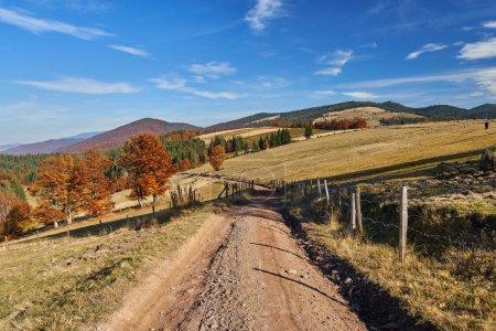 Dirt road through autumnal landscape