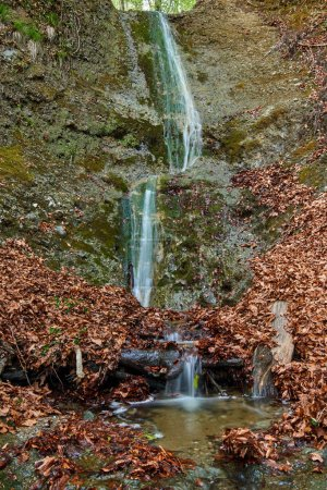 Small waterfall surrounded by fallen leaves