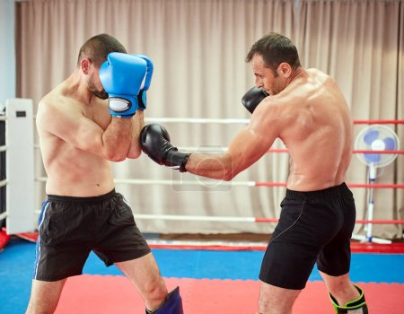 Photo for Two kickbox fighters sparring in the ring - Royalty Free Image