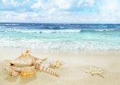 View on sandy beach.