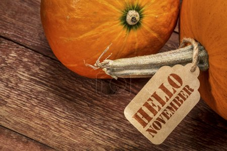 pumpkin with Hello November tag