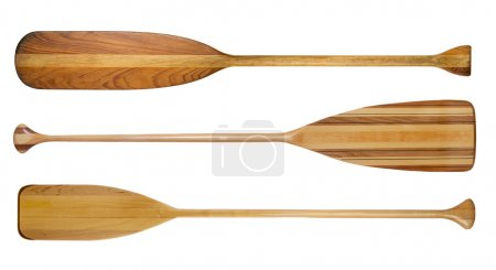 wooden canoe paddles isolated