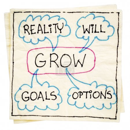 Goals, reality, will and options - GROW