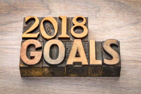 2018 goals banner in wood type