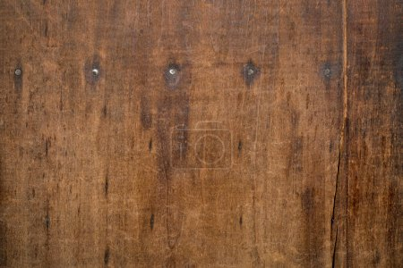 Photo for Background texture of  weathered, scratched, grunge wood board with a row of nails - Royalty Free Image