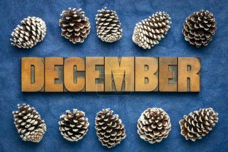 Photo pour December month - word in vintage letterpress wood type against dark blue handmade textured paper with frosty decorative pine cones - calendar concept - image libre de droit