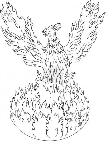 Illustration for Drawing sketch style illustration of a phoenix rising up from fiery flames, wings raised for flight done in black and white set on isolated white background. - Royalty Free Image