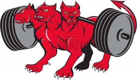 Illustration for Illustration of cerberus, in Greek and Roman mythology, a multi-headed usually three-headed dog, or hellhound with a serpent's tail, a mane of snakes lion's claws powerlifting barbell done in cartoon style . - Royalty Free Image