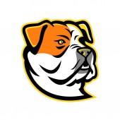 American Bulldog Mascot
