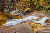Fall Stream in Mountain Forest