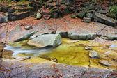 Creek on Flat Table Rocks
