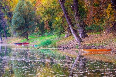 Photo pour Lac paisible d'automne Paysage de la Tisza en Hongrie - image libre de droit